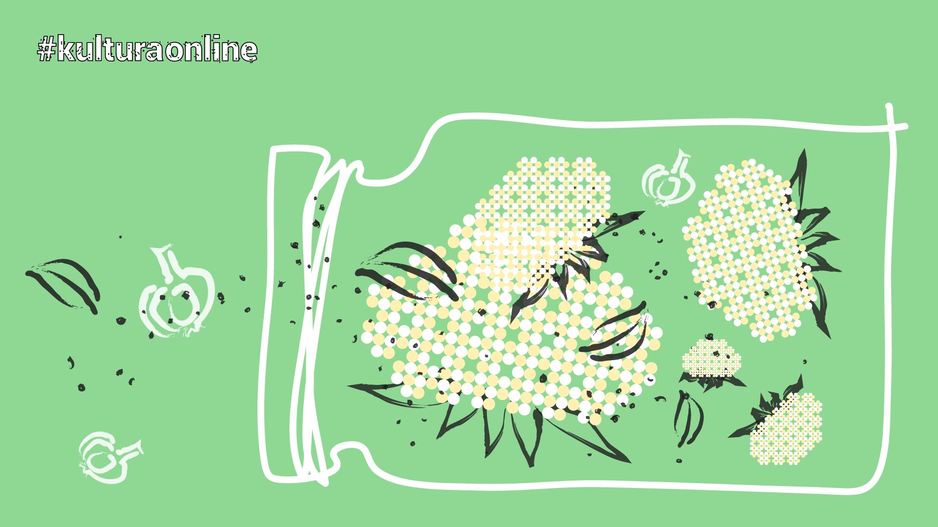 symbolicznie zarysowany słoik z kalafiorem, czosnkiem i przyprawami na miętowym tle, napis: #kulturaonline
