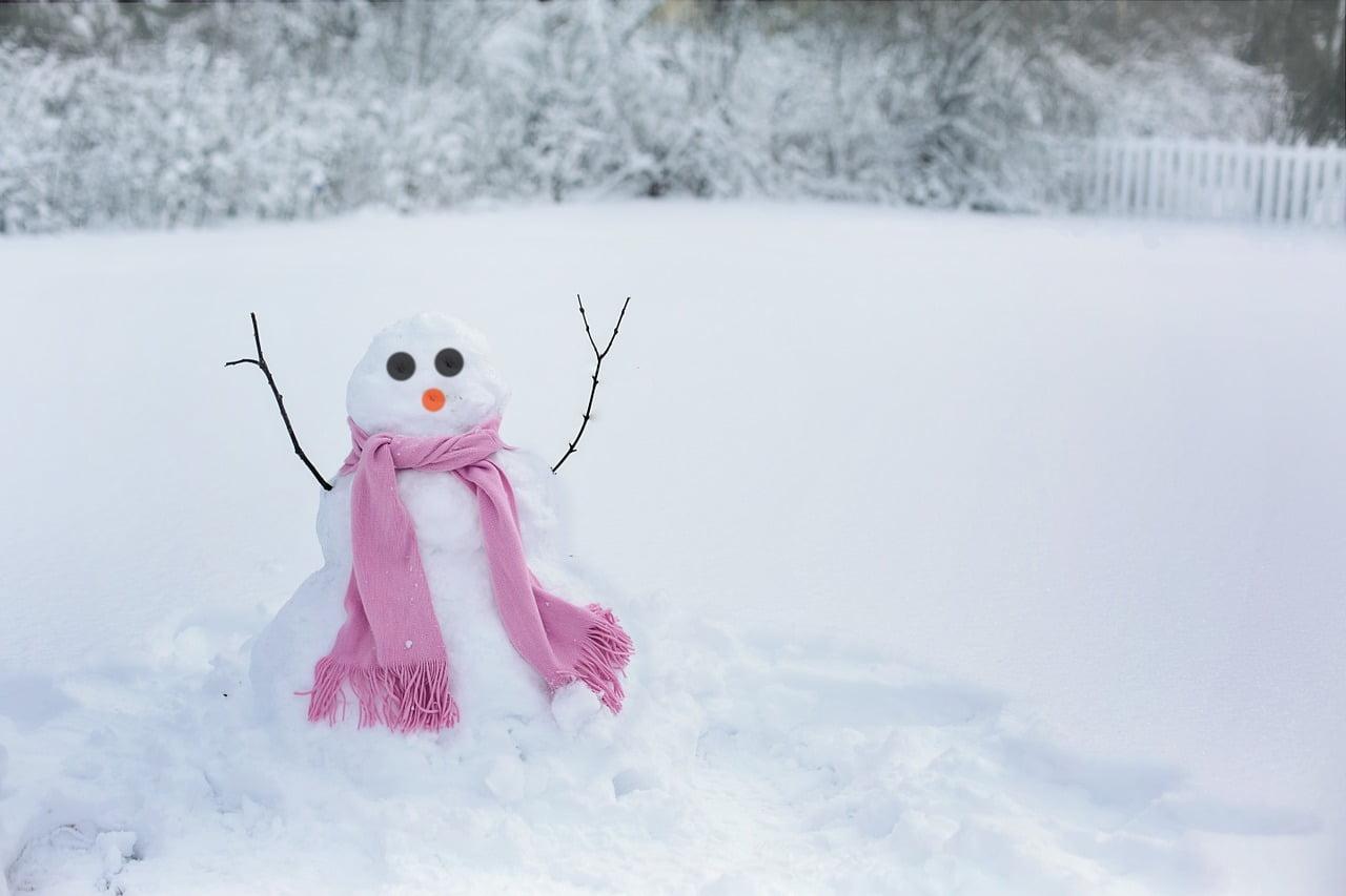 Zdjęcie śniegowego bałwana ustawionego na zasypanej śniegiem polanie. Bałwan ma czarne oczy, pomarańczowy nos, jego ręce zrobione z patyków są wzniesione w górę. Bałwan ma na sobie różowy szalik.