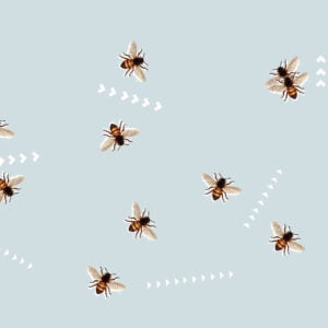 grafika promująca wydarzenie: pszczoły latające w różnych kierunkach