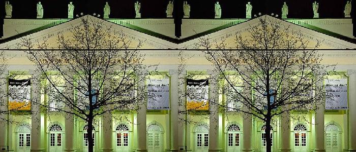 Zdjęcie przedstawia dwa drzewa na tle budynku.